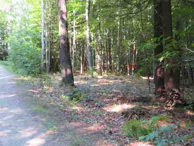 Moultonborough Residential Lots & Land For Sale: Ossipee Mountain Road