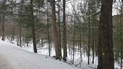Pittsford Residential Lots & Land For Sale: 860 Sugar Hollow Road