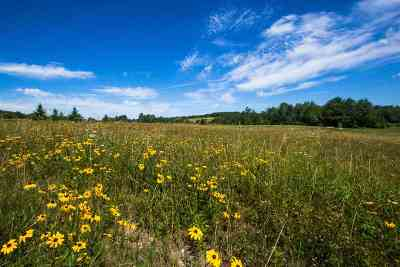 Williston Residential Lots & Land For Sale: 4285 Oak Hill Road
