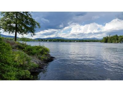 Moultonborough Residential Lots & Land For Sale: Lot 65.1 Gansy Island