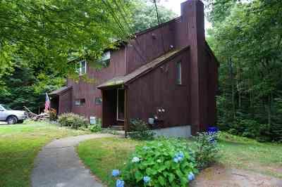 Hudson Condo/Townhouse For Sale: 9a David Drive #A