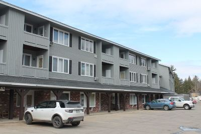 Woodstock Condo/Townhouse For Sale: 193 Main Street #unit 214