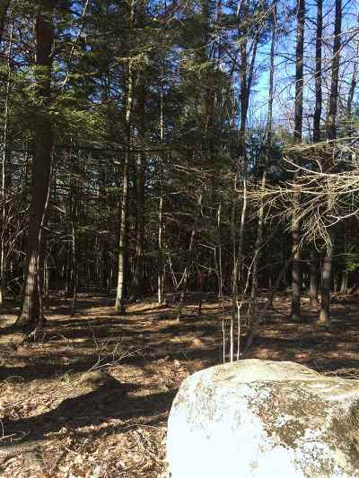 New Boston Residential Lots & Land For Sale: 97-1 McCollum Road #14-97-1
