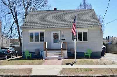 Nashua Single Family Home For Sale: 19 Williams Street