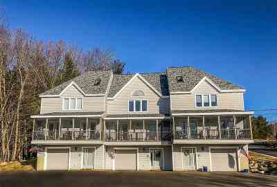 Weare Condo/Townhouse Active Under Contract: 52 Collins Landing #87