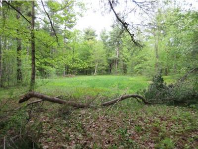 Charlotte Residential Lots & Land For Sale: 380 Dolliver Drive #Lot #7