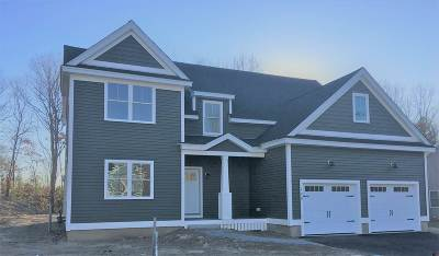 Dover Single Family Home For Sale: Lot 49 Emerald Lane #49