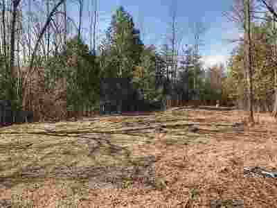 Grand Isle County Residential Lots & Land For Sale: 38 Allen Road