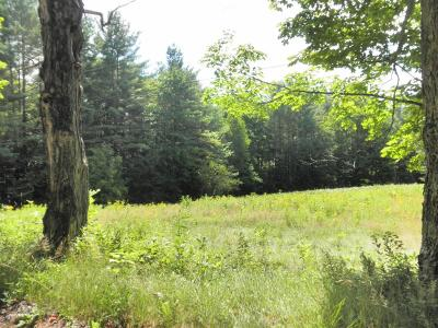Residential Lots & Land For Sale: 653 Mill Brook Road