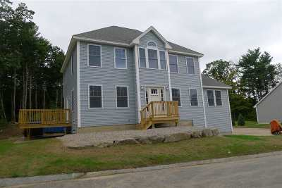 Dover Single Family Home For Sale: Picnic Rock Drive #18