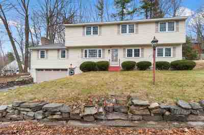 Nashua Single Family Home For Sale: 10 Oakdale Avenue