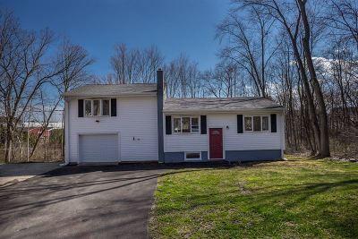 Dover Single Family Home For Sale: 5 Rose Street