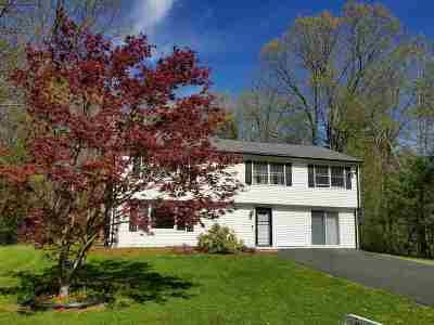 Merrimack County Single Family Home For Sale: 27 Joanne Drive