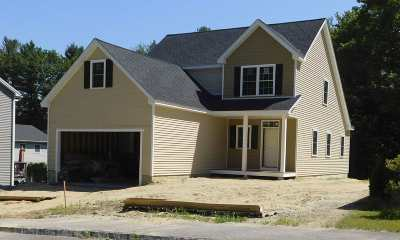 Dover Single Family Home For Sale: Lot 7 Picnic Rock Drive
