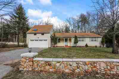 Milford Single Family Home Active Under Contract: 131 Summer Street