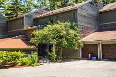 Chittenden County Condo/Townhouse For Sale: 161 Austin Drive #36