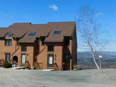 Campton Condo/Townhouse For Sale: 84 Richardson Trail #21