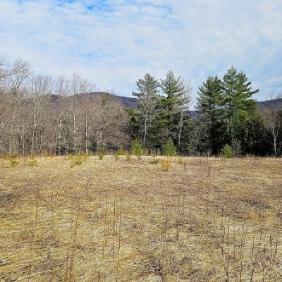 Hinesburg Residential Lots & Land For Sale: 2920 Lincoln Hill Road