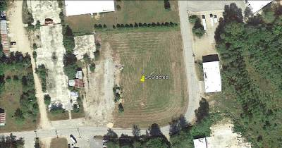 Carroll County Residential Lots & Land For Sale: 166 Hobbs Street