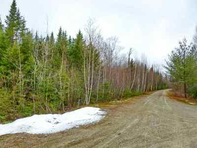 Carroll Residential Lots & Land For Sale: Maple Drive