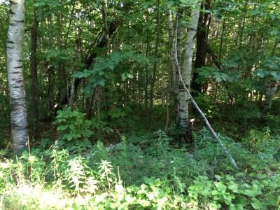 Norwich Residential Lots & Land For Sale: 1185 Union Village Road