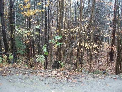 Alexandria Residential Lots & Land For Sale: Lot 2 Perkins Hill Road