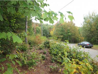 Dalton Residential Lots & Land For Sale: Mountain Road
