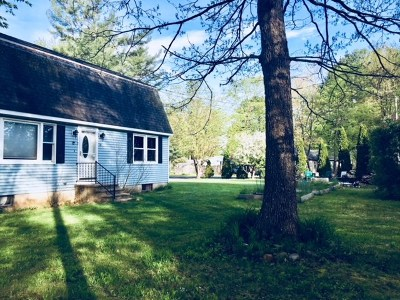 Dover Single Family Home For Sale: 10 Lakeview Drive