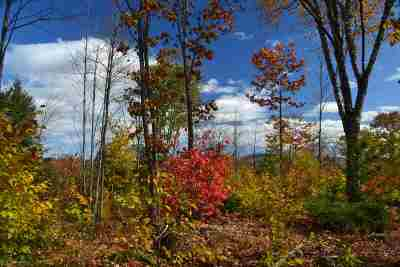 Alexandria Residential Lots & Land For Sale: Over Cass Mill Road