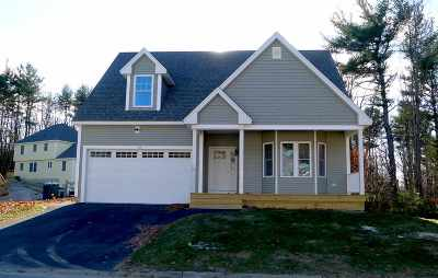 Dover Single Family Home For Sale: Lot 12 Picnic Rock Drive