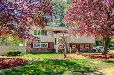 Salem Single Family Home For Sale: 16 Parker Circle