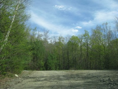Dalton Residential Lots & Land For Sale: Comeau Road