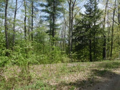 Merrimack County Residential Lots & Land For Sale: Bean Hill Road