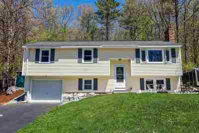 Goffstown Single Family Home For Sale: 10 Third Avenue