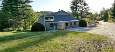 Andover NH Commercial For Sale: $325,000