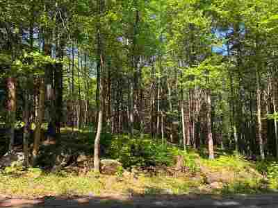 Henniker Residential Lots & Land For Sale: 112 Craney Hill Road #583/OH