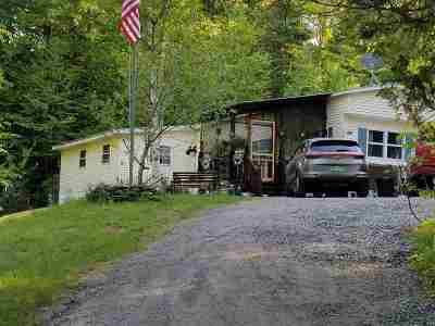 Caledonia County Single Family Home For Sale: 1373 Center Pond Road