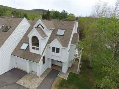 Waterville Valley Condo/Townhouse For Sale: 92 Osceola Road #42