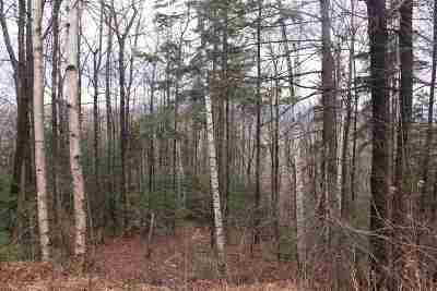Bethlehem Residential Lots & Land Active Under Contract: 3a Mountain View Lane