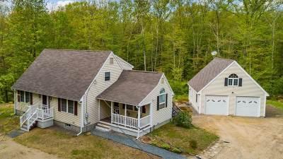 Center Harbor Single Family Home For Sale: 300 Center Harbor Neck Road