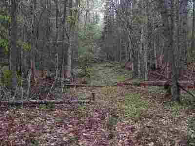 Littleton Residential Lots & Land For Sale: 2724 N Littleton Road