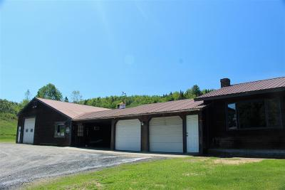 Wolcott Single Family Home For Sale: 5580 Vt Rte 15 Highway