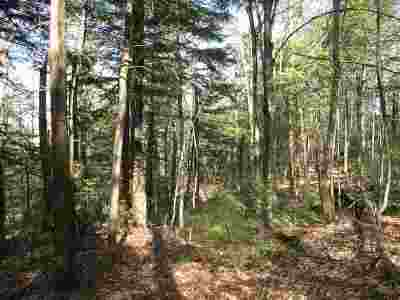 Alexandria Residential Lots & Land For Sale: 885 Mount Cardigan Road