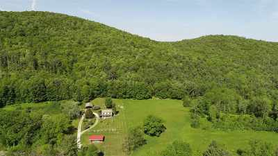 Poultney Single Family Home For Sale: 4612 Vermont Route 140 Road