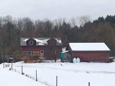 Cambridge Single Family Home For Sale: 3357 Vt Route 108 North