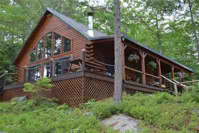 Moultonborough Single Family Home For Sale: 12 Gansy Island