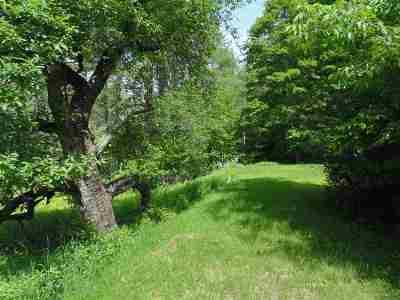 Norwich Single Family Home For Sale: 32/8 Ruella Road