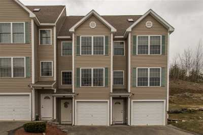 Hudson Condo/Townhouse For Sale: 1a Tammy Court