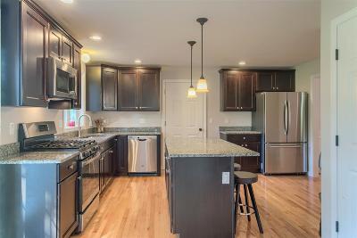 Hudson Single Family Home For Sale: 13 Kenyon Street