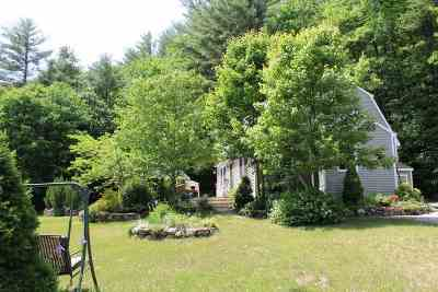 Holderness Single Family Home For Sale: 117 Perch Pond Road